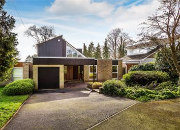 Thumbnail 4 bed detached house for sale in Wheat Knoll, Kenley