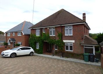 Thumbnail 4 bed property to rent in Nodgham Lane, Newport