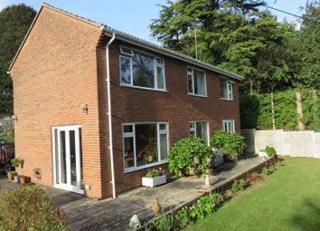 Thumbnail 4 bed detached house for sale in Bews Lane, Chard