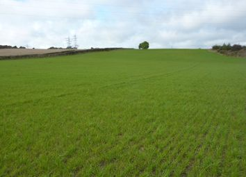 Thumbnail Land for sale in Hollinhill Lane, Tyne And Wear