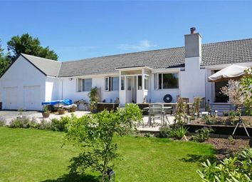Thumbnail 4 bed semi-detached bungalow for sale in Tregadillett, Launceston