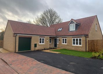 Thumbnail 4 bed detached bungalow for sale in Plot 44 The Folkingham, Pinchbeck Field, Spalding