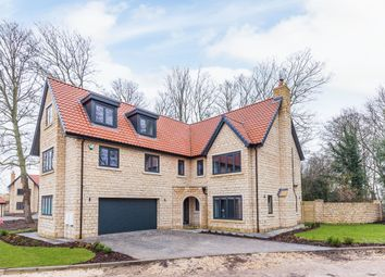 Thumbnail 6 bedroom detached house for sale in Treetops, Maplewood Place, Abbes Walk, Burghwallis, Doncaster