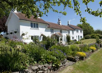 Thumbnail 5 bedroom cottage for sale in Widegate, Southgate, Swansea