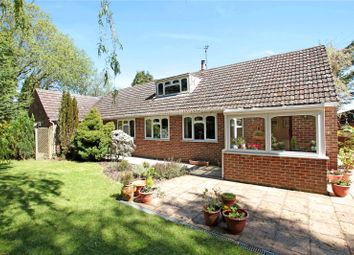 Thumbnail 4 bed detached bungalow for sale in Station Road, Semley, Shaftesbury, Wiltshire