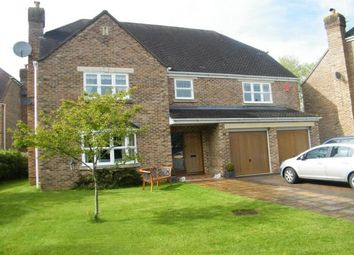 Thumbnail 5 bed property to rent in Merretts Orchard, Slimbridge, Gloucester