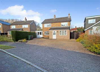 Thumbnail 4 bed detached house for sale in Orchard Way, Tasburgh, Norwich, Norfolk