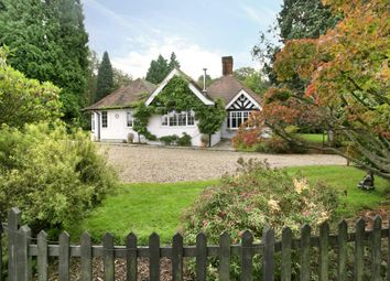 Thumbnail 4 bed bungalow to rent in Tilley Lane, Headley, Epsom