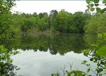 Thumbnail Land for sale in Potters Pool Wood, Mytchett, Camberley