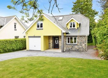 Thumbnail 4 bed detached house for sale in Higher Warborough Road, Galmpton, Brixham, Devon