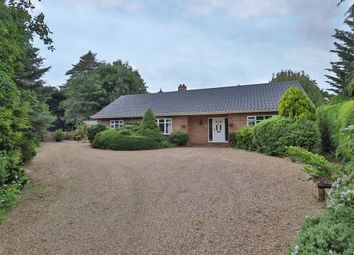 Thumbnail 4 bed detached bungalow for sale in Diss Road, Burston, Diss