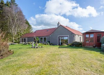 Thumbnail 4 bedroom bungalow for sale in Craigrothie, Cupar, Fife
