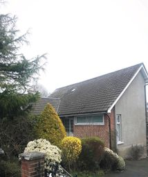 Thumbnail 4 bed detached house to rent in Cairnshill Road, Belfast