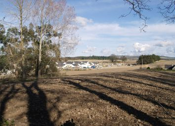 Thumbnail Commercial property for sale in Knockomie Land, Forres