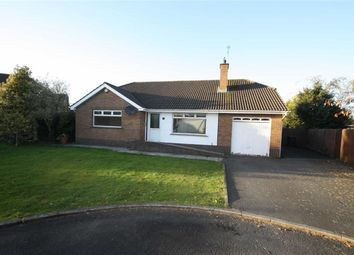 Thumbnail 3 bed detached house for sale in Kinedale Park, Ballynahinch