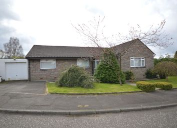 Thumbnail 4 bed bungalow for sale in Croftfoot Place, Denny