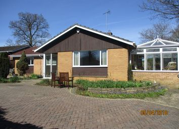 Thumbnail 3 bed bungalow to rent in Peterborough Avenue, Oakham