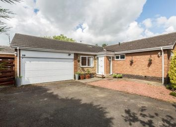 Thumbnail 4 bedroom bungalow for sale in Collingwood Crescent, Darras Hall, Ponteland, Northumberland