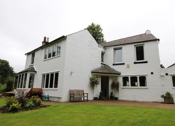 Thumbnail 4 bed property to rent in Lambley Bank, Scotby, Carlisle