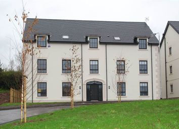 Thumbnail 2 bed flat to rent in 18, Fountain Mews, Lisburn