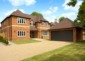 Thumbnail 5 bed detached house for sale in Cinnamon Tree Site, Maidens Green, Winkfield, Windsor