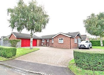 Thumbnail 4 bed bungalow for sale in Tyburn Lane, Pulloxhill, Bedford