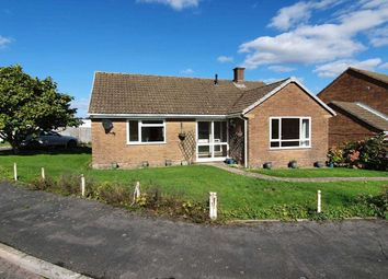 Thumbnail 3 bed detached bungalow to rent in Bewley Court, Chard