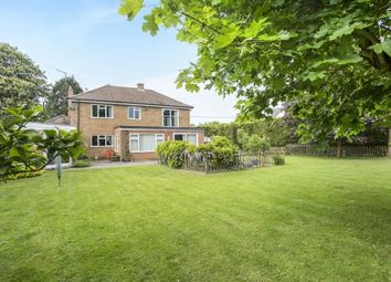 Thumbnail 4 bed detached house for sale in Downham Market, Norfolk