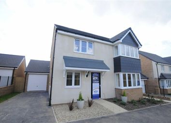 Thumbnail 4 bed detached house for sale in Shorelands, Stratton Road, Bude, Cornwall