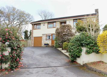 Thumbnail 4 bedroom detached bungalow for sale in Old Barnstaple Road, Bideford