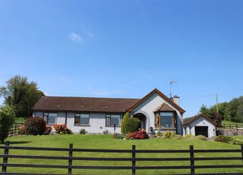 Thumbnail 3 bed bungalow for sale in Shinn Road, Newry