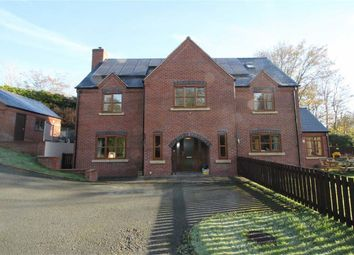 Thumbnail 4 bed detached house for sale in Stone Lane, Welshpool