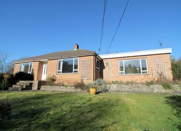 Thumbnail 3 bed detached bungalow for sale in The Slad, Little London, Longhope
