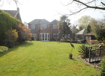 Thumbnail 4 bed detached house for sale in The Comp, Eaton Bray, Bedfordshire