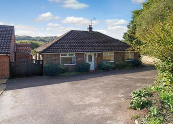 Thumbnail 3 bed detached bungalow for sale in Hammer Vale, Haslemere