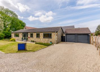 Thumbnail 3 bed detached bungalow for sale in Melmerby, Ripon