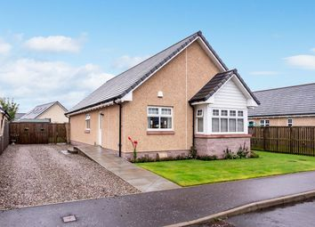 Thumbnail 3 bed detached bungalow for sale in Osprey Crescent, Gowanbank, Forfar