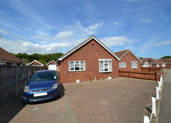 Thumbnail 3 bedroom detached bungalow to rent in Gorse Lane, Clacton-On-Sea