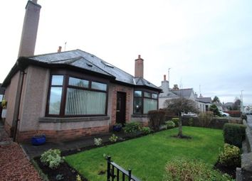 Thumbnail 4 bed detached house to rent in Rosehill Road, Montrose