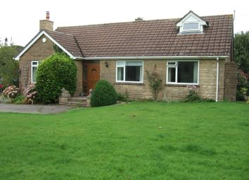 Thumbnail 4 bed detached bungalow to rent in Bridport Road, Drimpton, Beaminster