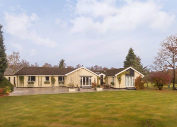 Thumbnail 5 bed property to rent in Taigh Na Moine, Whitemoss, West Linton