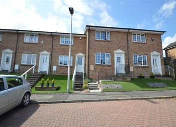Thumbnail 2 bedroom terraced house for sale in Buckingham Court, Hamilton