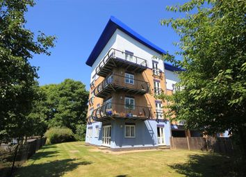 2 bed flat to let in Luscinia View