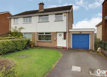 Thumbnail 3 bed semi-detached house for sale in Hollymount Road, Newtownards
