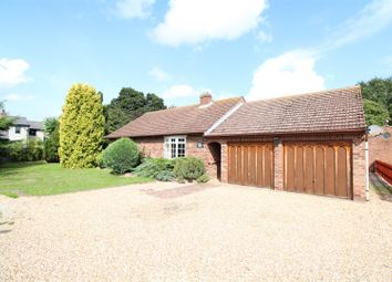 Thumbnail 4 bed detached bungalow for sale in Heath Road, East Bergholt, Colchester