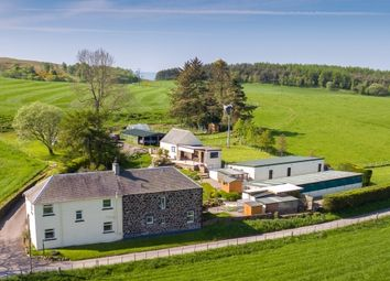 Thumbnail Leisure/hospitality for sale in Perth, Perth And Kinross
