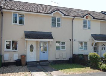 2 bed terraced house to rent in White Friars Lane, St. Judes, Plymouth PL4