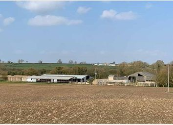 Thumbnail Commercial property for sale in Common Farm, Newton Road, Stoke Hammond, Buckinghamshire