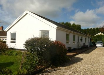 Thumbnail 3 bed detached bungalow for sale in Can-Y-Gwynt, Station Road, Maenclochog, Clynderwen, Pembrokeshire