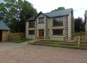 Thumbnail 4 bed detached house for sale in Upper Weston, Weston-Under-Penyard, Ross-On-Wye